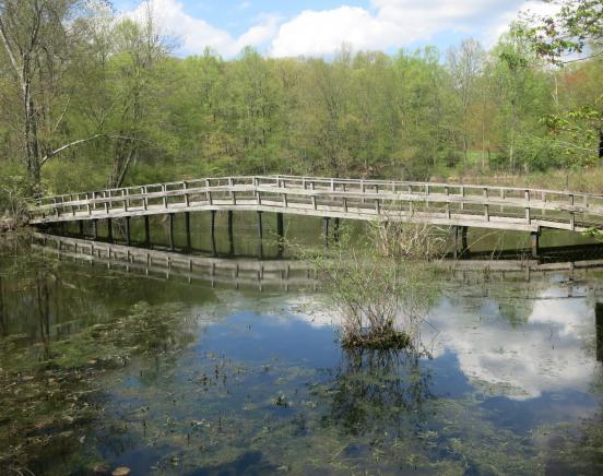 View of the footbridge to Wildflower Island from the Lakeside Trail - Photo by Daniel Chazin