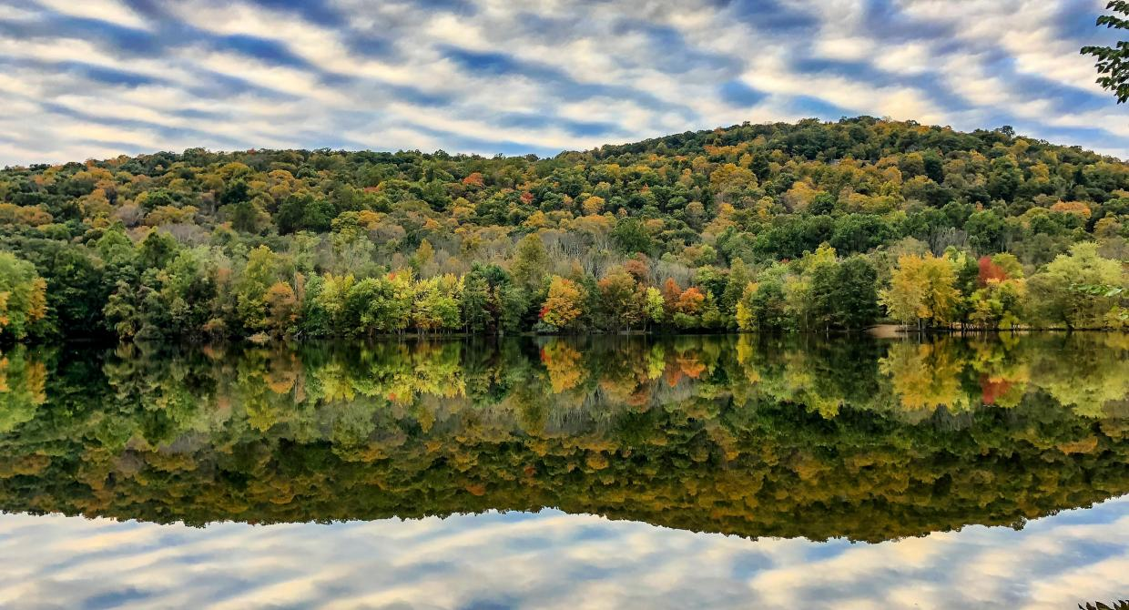 Ramapo Reservation reflection. Photo by Diana Richards.