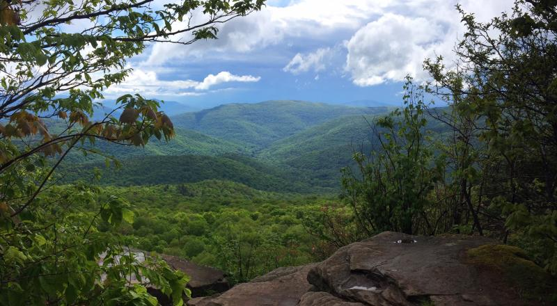 View from Giant Ledge in the Catskills. Photo by Marlee Goska.